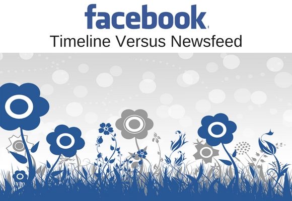 Facebook is the world's most popular site, but many users are confused of the difference of their Personal Timeline versus their Newsfeed